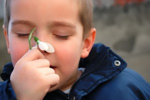 boy and a snowdrop