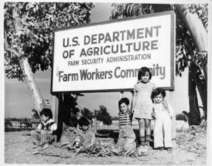 child farm workers not in summer school